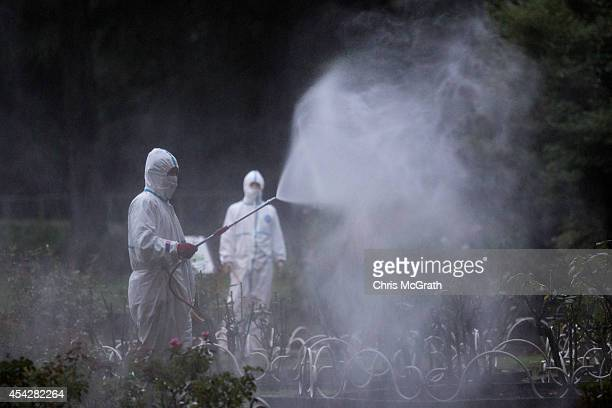 Workers spray pesticide in Yoyogi Park on August 28 2014 in Tokyo Japan Sections of Yoyogi Park were closed to the public today as they underwent...