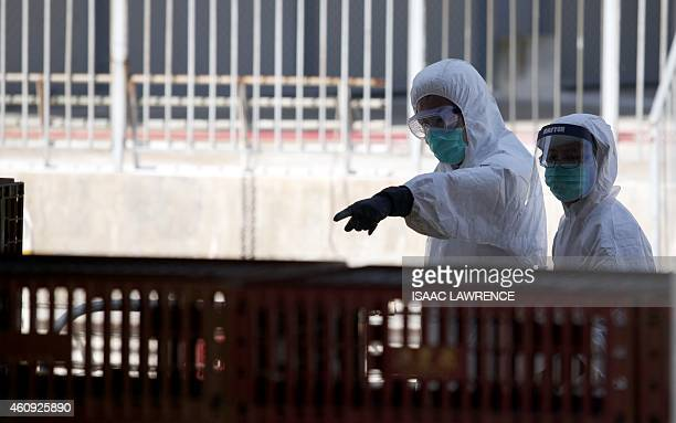 Workers stand on front of crates containing live chickens before they are culled in Hong Kong on December 31 after the deadly H7N9 virus was...
