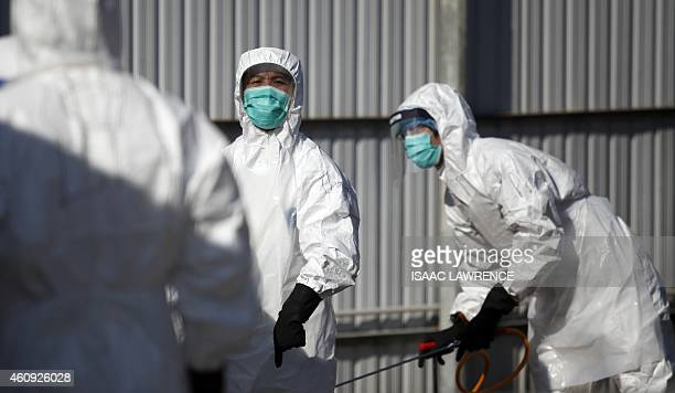 Workers take part in a chicken cull in Hong Kong on December 31 after the deadly H7N9 virus was discovered in poultry imported from China Hong Kong...