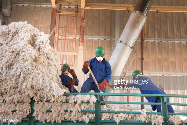 Workers unload a truck with raw cotton at the company Faso Coton Here raw cotton is seeded seeds and cotton are separated and will be sold on...
