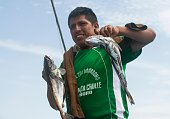 A workers unloads the catch of the day at the pier in Nuro Piura northern Peru on July 12 2016 Overfishing has put in risk the subsistence of the...