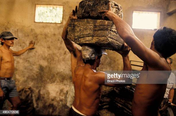 Workers weigh rubber before loading truck for the tire industry in Amazon rain forest Brazil Xapuri city Acre State