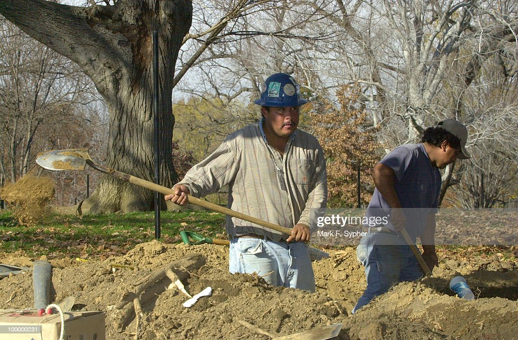 Workers who asked to not be named, shovel dirt on Thursday, in preparation of a very busy weekend of transplanting.