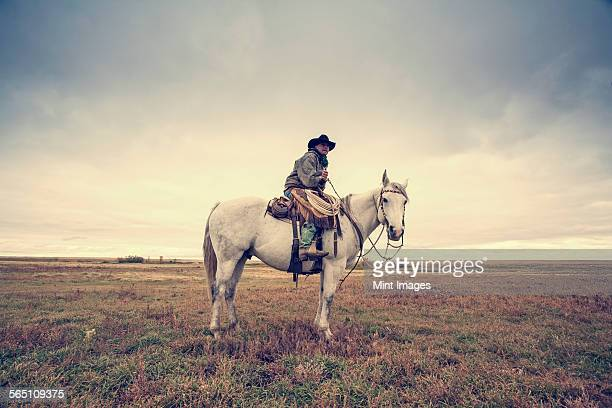 A working cowboy seated on a grey horse.