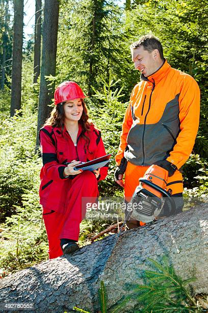 Working discussions between technical engineer and lumberjack in forest