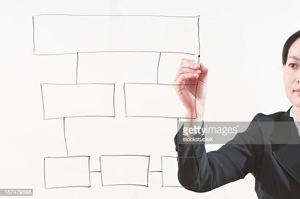 Working Flow Chart