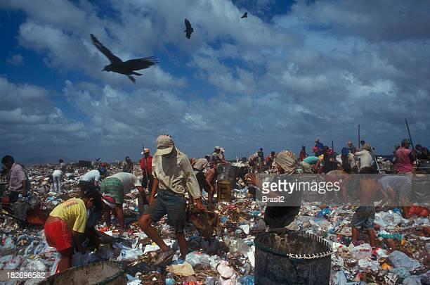 Working in a landfill