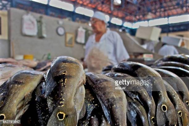 Working in Brazil at the fish market.