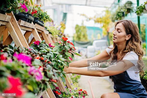 Working in the garden center