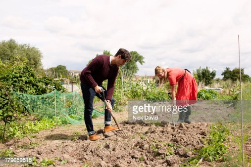 Working on an allotment
