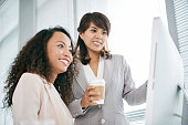 Cheerful business women analyzing information on screen of computer