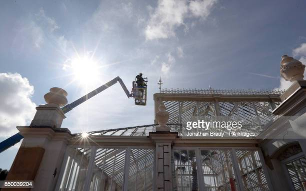 Workmen in the Royal Botanic Gardens in Kew SW London inspect the windows on the Temperate House that will reopen in May next year after the...