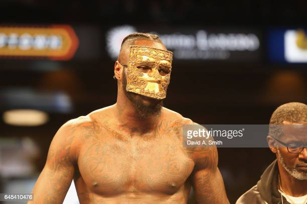 World Heavyweight Champion Deontay Wilder enters the ring for his fight against Gerald Washington at Legacy Arena at the BJCC on February 25 2017 in...