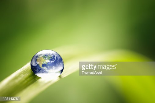 World in a drop - Nature Environment Green Water Earth
