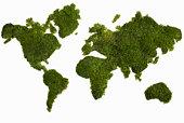 world map made of foliage