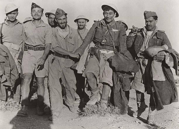 World war ii battle of bir hakeim lybia pictures - French div 2 ...
