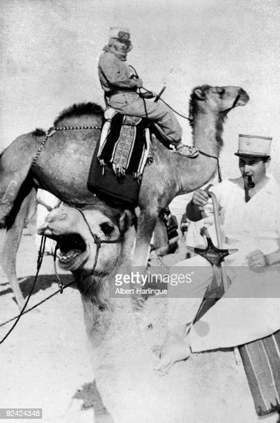 World War II Front of Syria Camel riders sent on reconnaissance June 1941