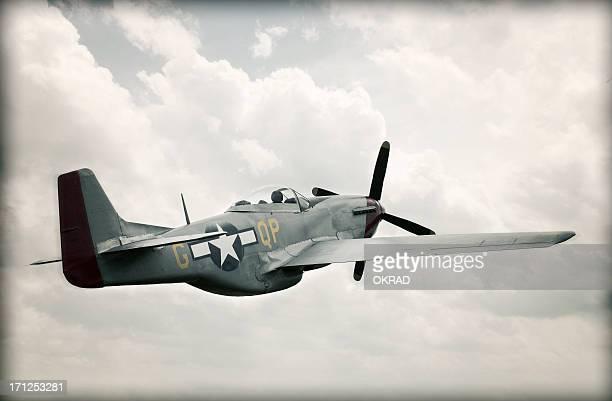 II Guerra mondiale TF - 51 Mustang nel cielo-invecchiato