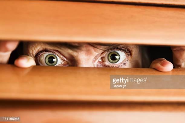 Besorgt alte Frau große Augen sieht durch hölzerne Jalousie