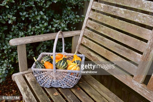 Woven basket full of orange, green and yellow ornamental gourds : Stock Photo