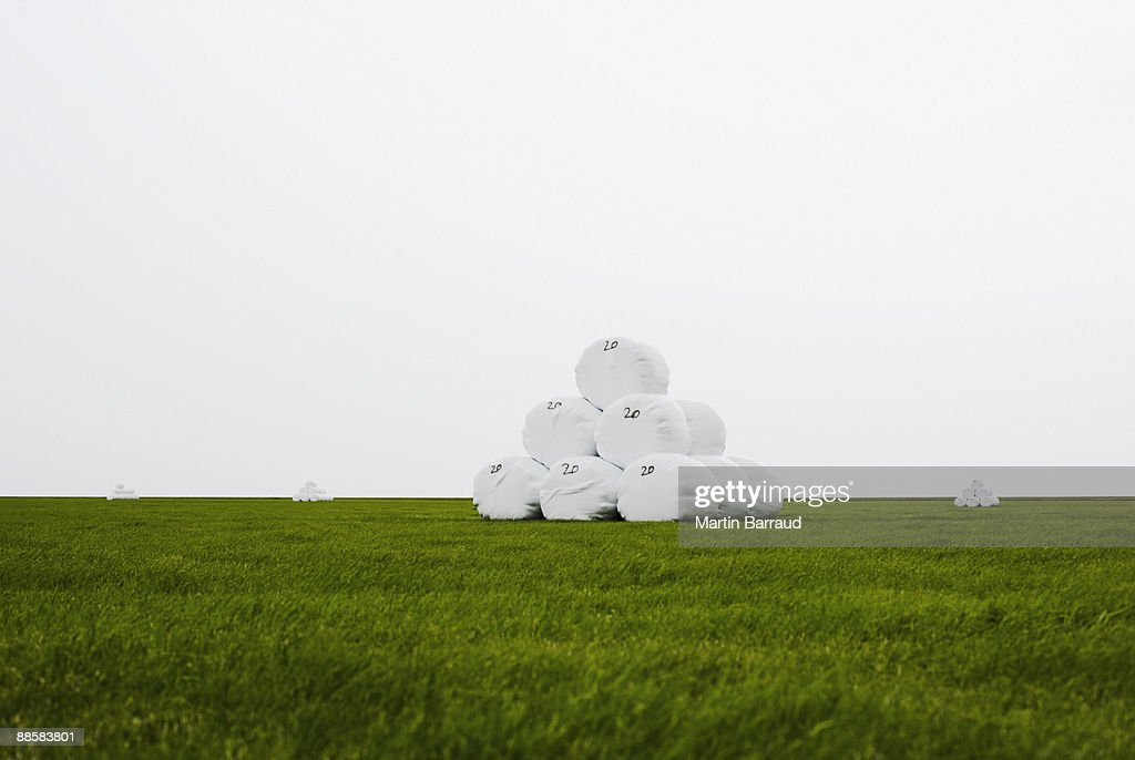 Wrapped hay bales stacked in field : Stock Photo