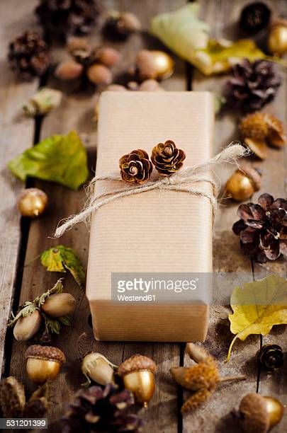 Wrapped present in between autumnal decoration