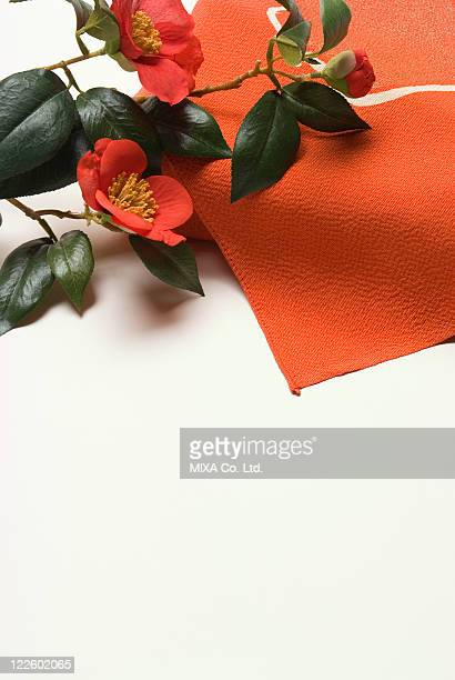 Wrapping cloth and camellia