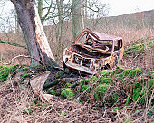 Wrecked car left in the woods