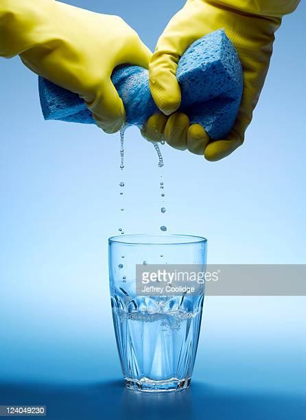 Wringing Sponge Into Water Glass