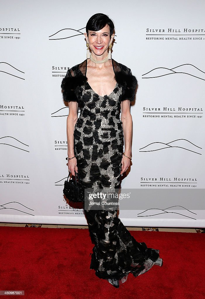 Writer Amy Fine Collins attends the 2013 Silver Hospital gala at Cipriani 42nd Street on November 20, 2013 in New York City.