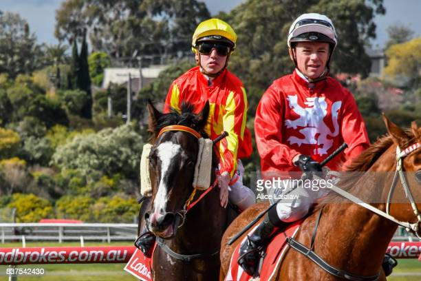 Written Choice ridden by Brandon Stockdale returns to scale after winning the Chandler Macleod Plate at Ladbrokes Park Hillside Racecourse on August...