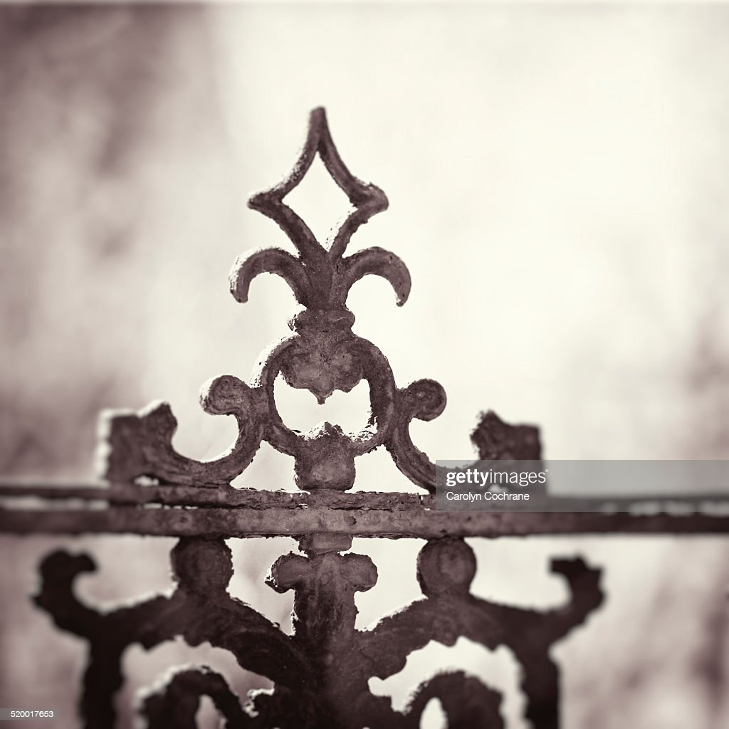 Wrought Iron Decorative Antique Gate