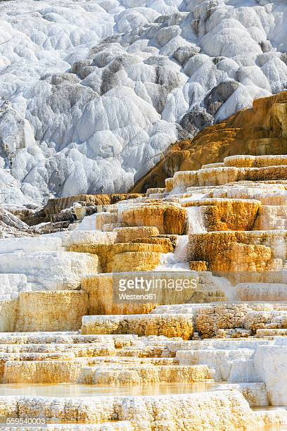 USA, Wyoming, Mammoth Hot Springs, Yellowstone National Park, Lower Terraces, Palette Spring