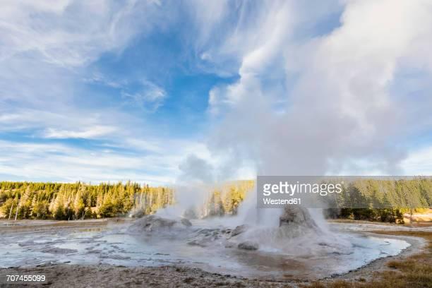 USA, Wyoming, Yellowstone National Park, Grotto Geyser