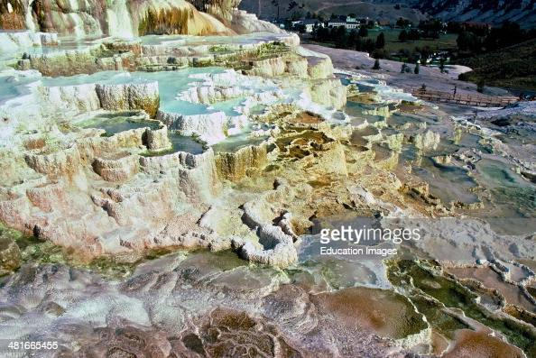 Minerva terrace stock photos and pictures getty images for Minerva terrace yellowstone