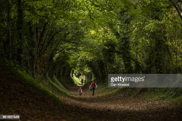 Xanthe LewisHall and her mum kick leaves as they walk through a tunnel of trees down an old Roman Road on October 16 2017 in Halnaker England The...