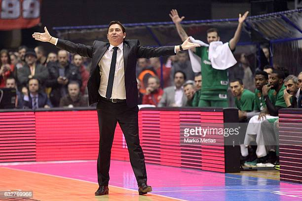 Xavi Pascual Head Coach of Panathinaikos Superfoods Athens in action during the 2016/2017 Turkish Airlines EuroLeague Regular Season Round 20 game...
