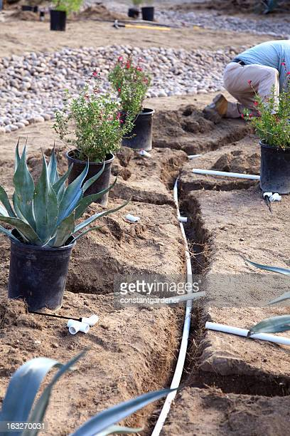Xeriscaping And Irrigation