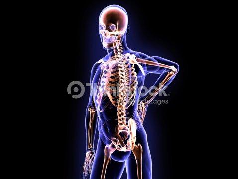 Röntgenbild Der Wirbelsäule Schmerzen Und Skelettsystems Stock-Foto ...