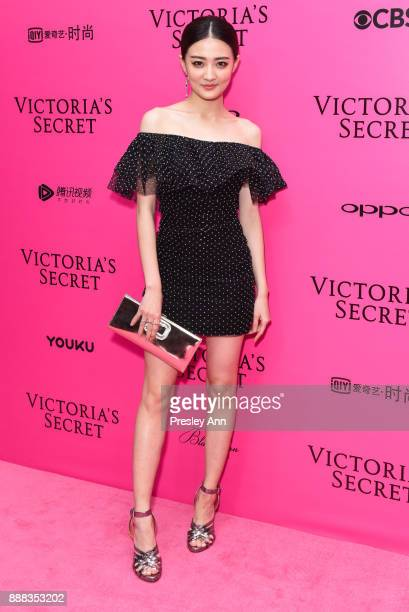 Xu Lu attends 2017 Victoria's Secret Fashion Show In Shanghai Pink Carpet Arrivals at MercedesBenz Arena on November 20 2017 in Shanghai China
