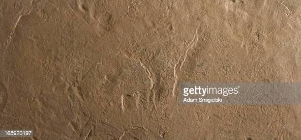 XXXLarge wall texture