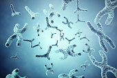 XY-chromosomes on grey background, scientific and biology concept with depth of field effect. 3d illustration