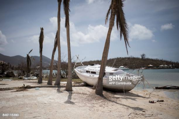 A yacht lies beached besides palm trees in a resort in the Baie Nettle area of Marigot on Saint Martin island on September 12 after it was devastated...