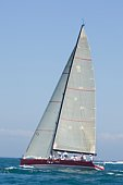 Yacht with white sail competes in team sailing event, California