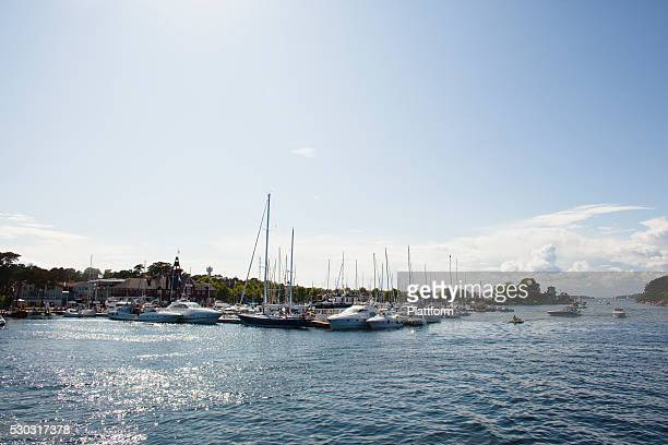 Yachts and sailing boats in harbor