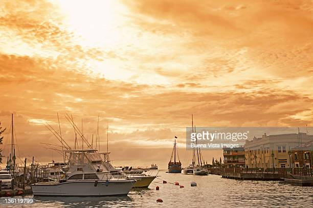 Yachts in a caribbean port at sunset
