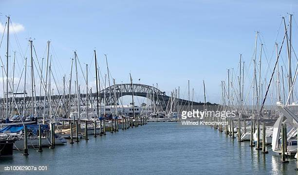 Yachts in marina near Harbour Bridge