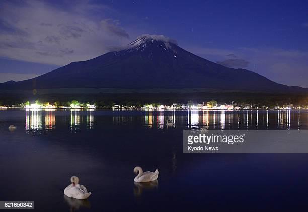 Yamanakako Japan Photo shows swans floating on Lake Yamanaka in Yamanashi Prefecture and Mt Fuji on the night of June 22 2013 The World Heritage...
