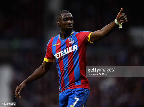 Yannick Bolasie of Crystal Palace in action during the Barclays Premier League match between West Bromwich Albion and Crystal Palace at The Hawthorns...