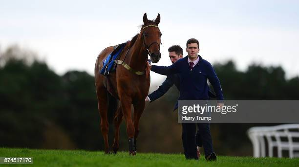 Yanworth is lead back to the stables after falling in the RGB Building Supplies Novices Chase at Exeter Racecourse on November 15 2017 in Exeter...